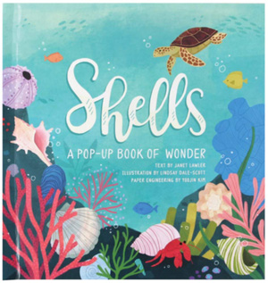 Shells: A Summer Pop-Up Book
