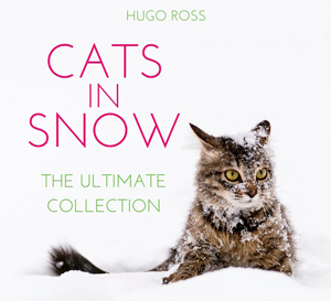 Cats in Snow: The Ultimate Collection