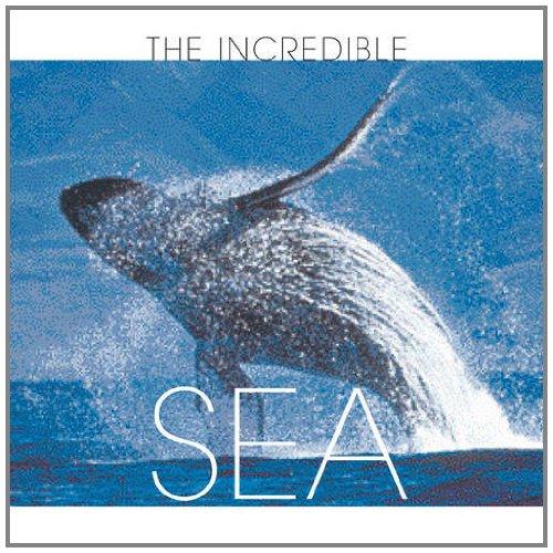 The Incredible Sea