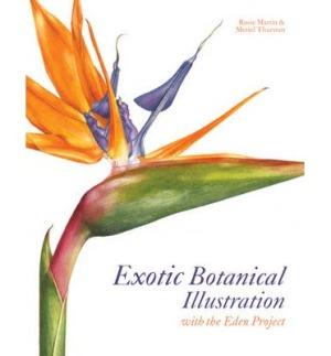 Exotic Botanical Illustration*