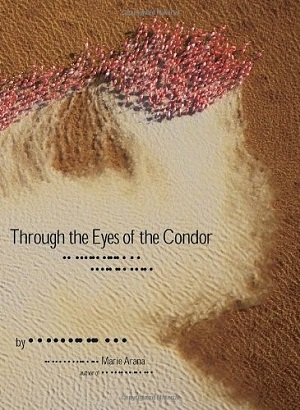 Through the Eyes of the Condor